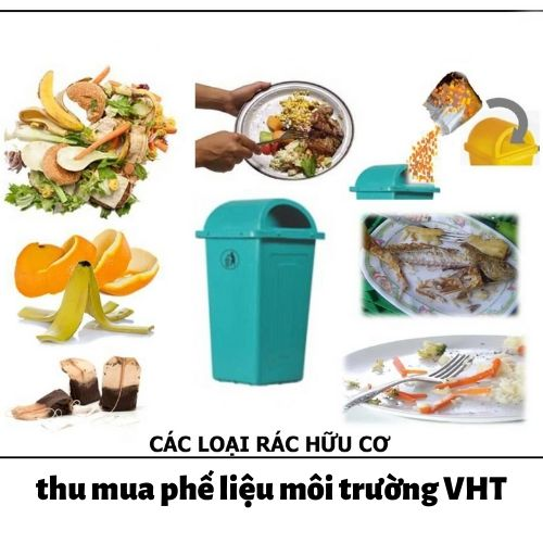 Các loại rác hữu cơ